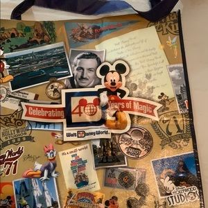 What Disney World 40th anniversary bag